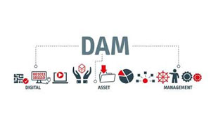 Top 3 DAM Trends M&E Enterprises Must Look For